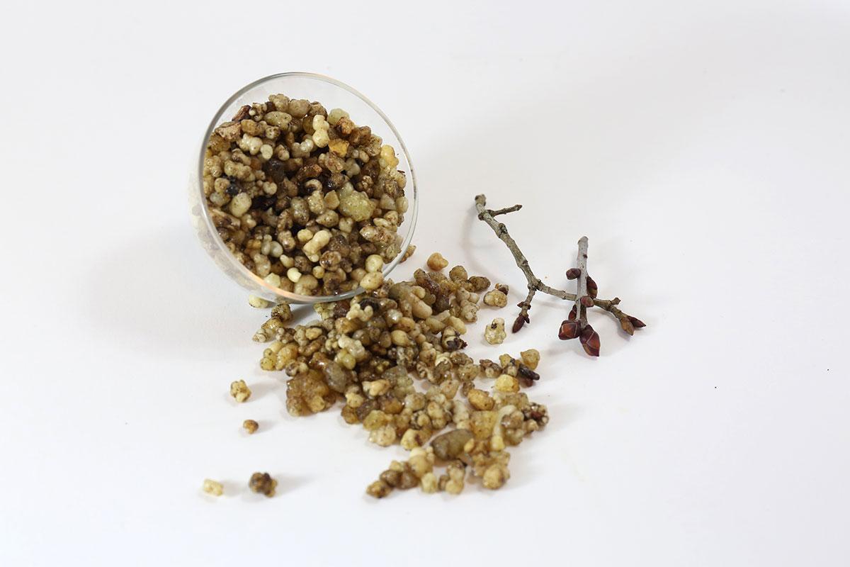 Mucknell Abbey Rievaulx Incense